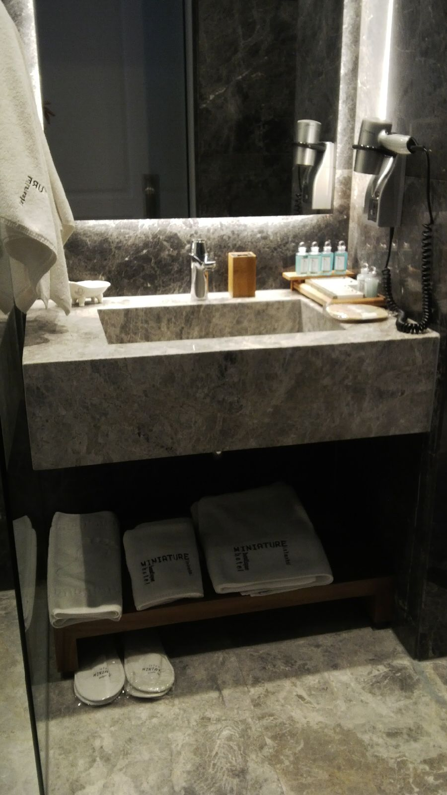 Hotel Miniature bathroom