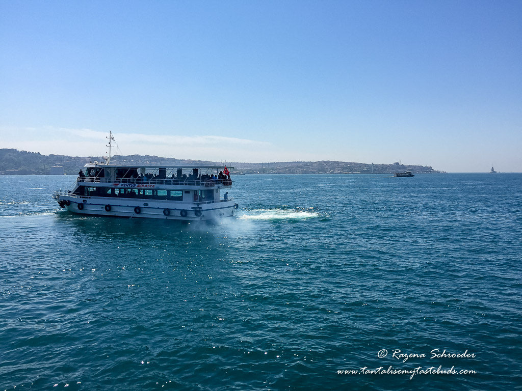 Bosphorus ferry ride on Istanbul holidays