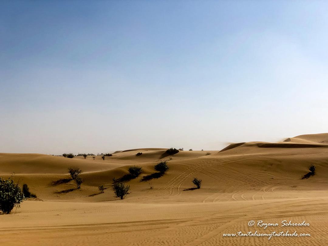 Expat life in Dubai - Desert