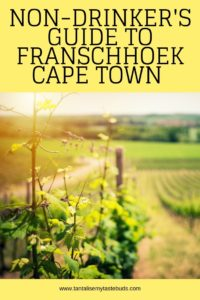 Franschhoek vineyards pin